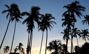 Abenddämmerung in Jambiani