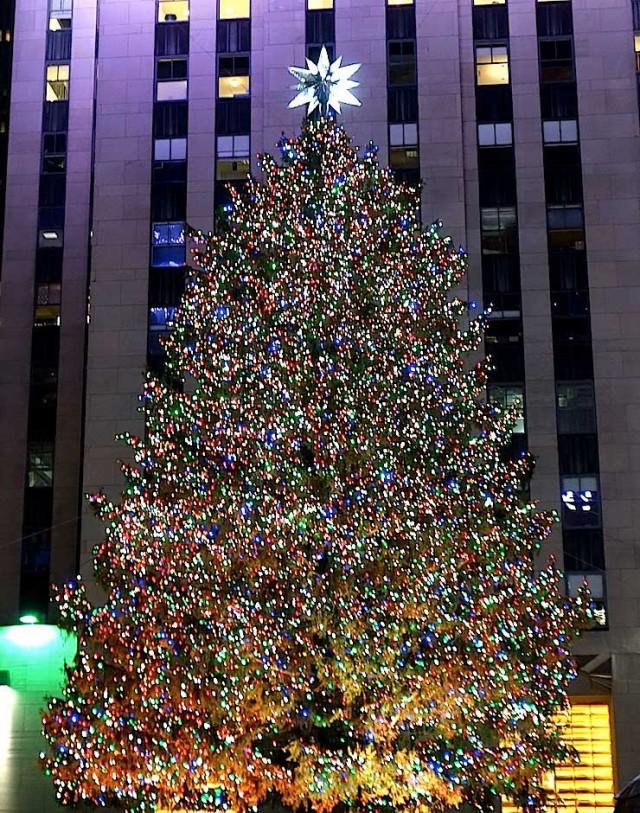 Rockerfeller Center Christmas Tree