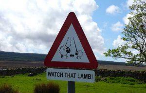 Straßenschild in Schottland